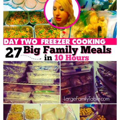 27+ Big Family Meals In 10 Hours | Freezer Cooking Day Two Freezer Meals