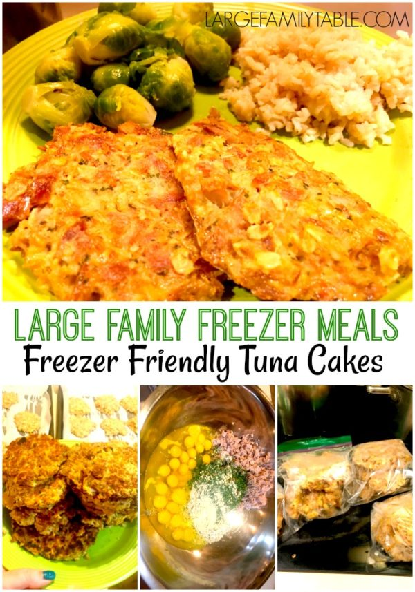 Large Family Oven Dinners