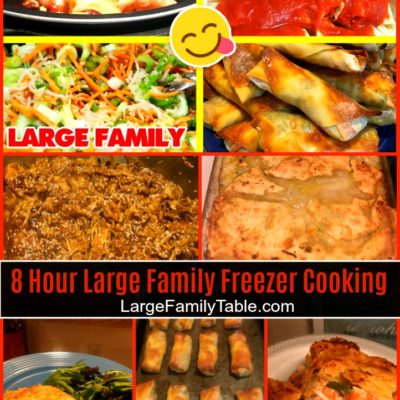 EXTREME FREEZER COOKING DAY | Large Family Meals
