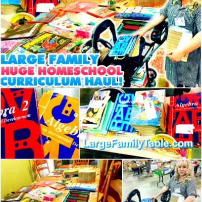 HUGE Homeschool Curriculum Haul