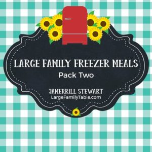 Large Family Freezer Meals Pack Two