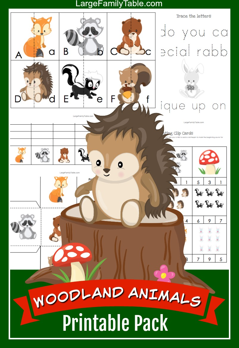 image relating to Printable Woodland Animals known as Woodland Animal 30+ Webpage Homeschool Printable Pack + Themed