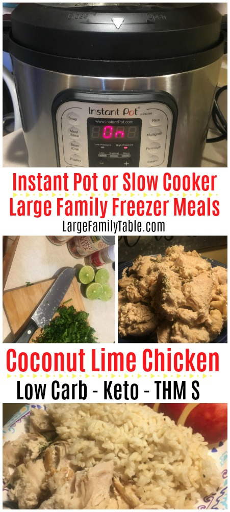 Instant Pot or Slow Cooker Large Family Freezer Meals