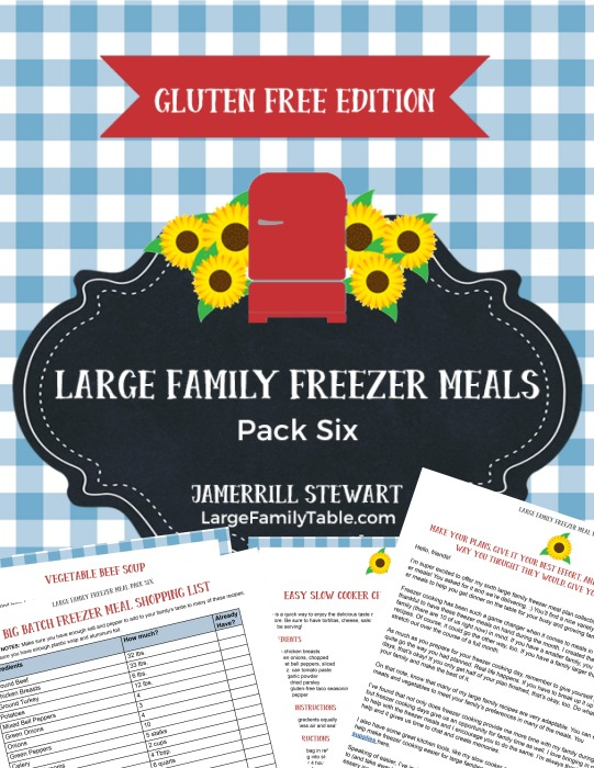 GLUTEN FREE LARGE FAMILY FREEZER MEALS PACK