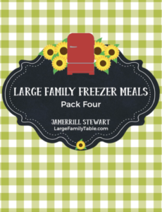 LARGE FAMILY FREEZER MEALS