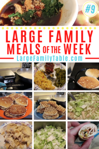 Large Family Meal Plan