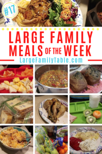 Large Family Meals of the Week #17