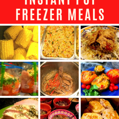Large Family Instant Pot Freezer Meal Recipes