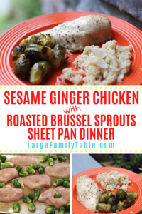 Sesame Ginger Chicken with Roasted Brussel Sprouts Sheet Pan Dinner