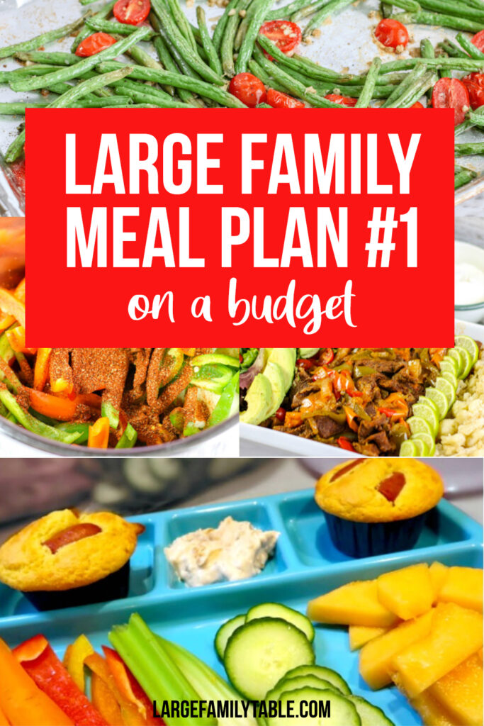 Large Family Meal Plan on a Budget