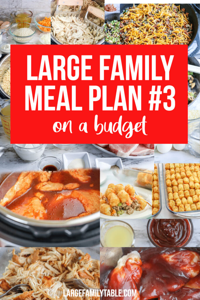 Budget Large Family Meal Plan