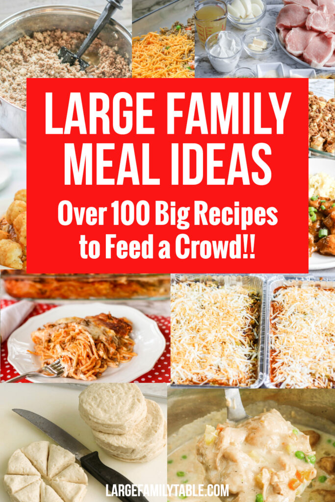 100+ Simple and Easy Large Family Oven Dinners
