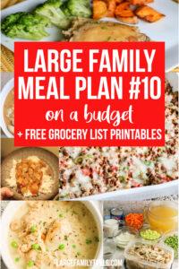 Meal Plan 10