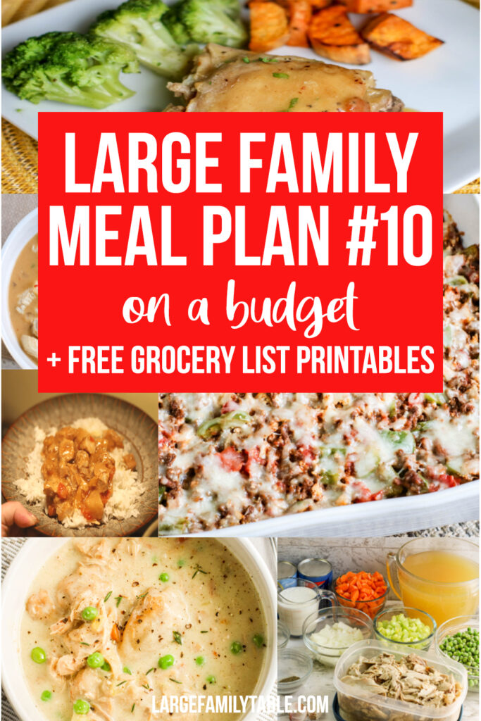 Large Family Meal Plan 10