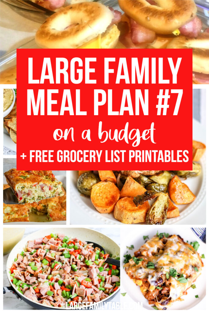 Large Family Meal Plan 7