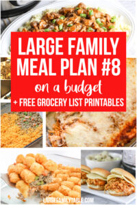 Large Family Meal Plan 8