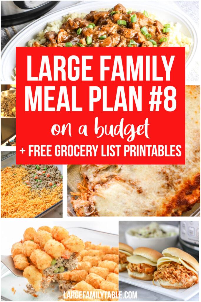 Budget-Friendly Meal Plan Week Eight