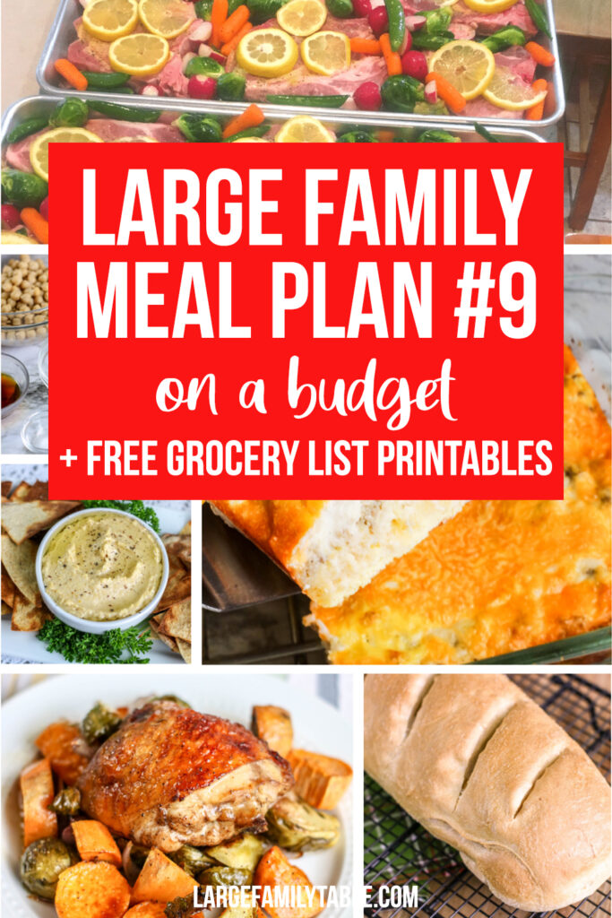 Large Family Meal Plan 9