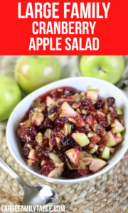 Large Family Cranberry Apple Salad | Sides for Large Families, Dairy Free