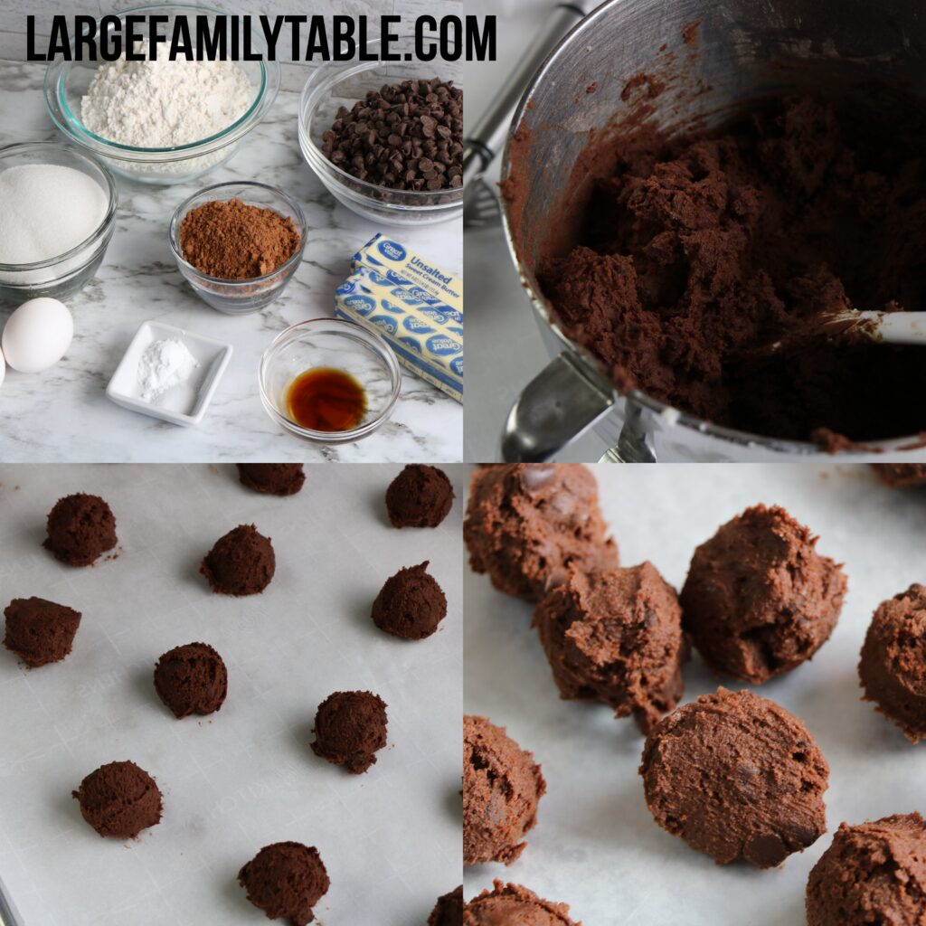Large Family Double Chocolate Chip Cookies |  Freezable and Make-Ahead Cookie Dough