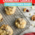 Large Family Make-Ahead White Chocolate Cranberry Walnut Cookies that You Can Freeze!