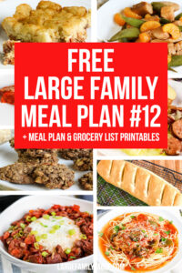 Large Family Meal Plan 12