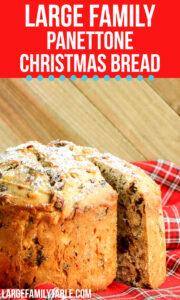 Panettone Christmas Bread