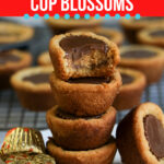 Peanut Butter Cup Blossoms
