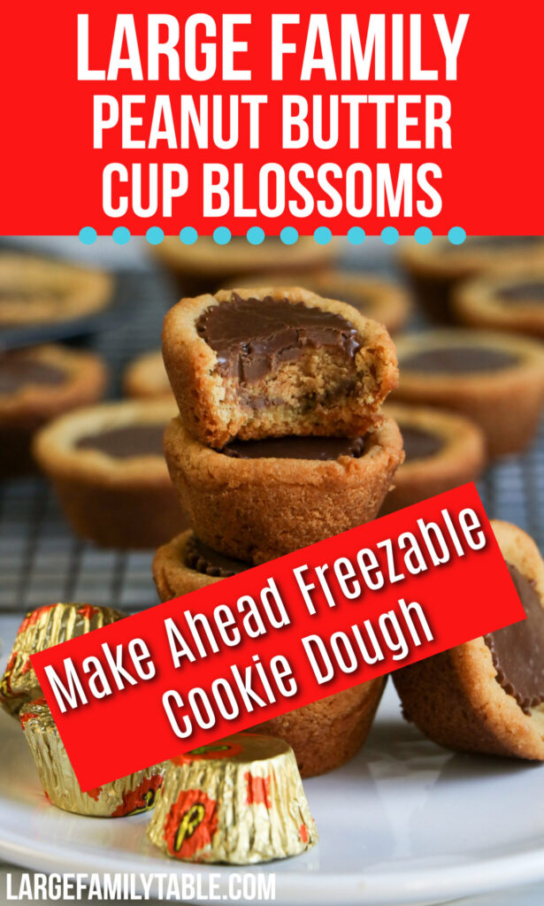 Peanut Butter Cup Blossoms | Large Family Cookies | Make Ahead Freezable Cookie Dough