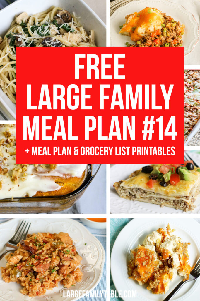 #14 Large Family Meal Plan