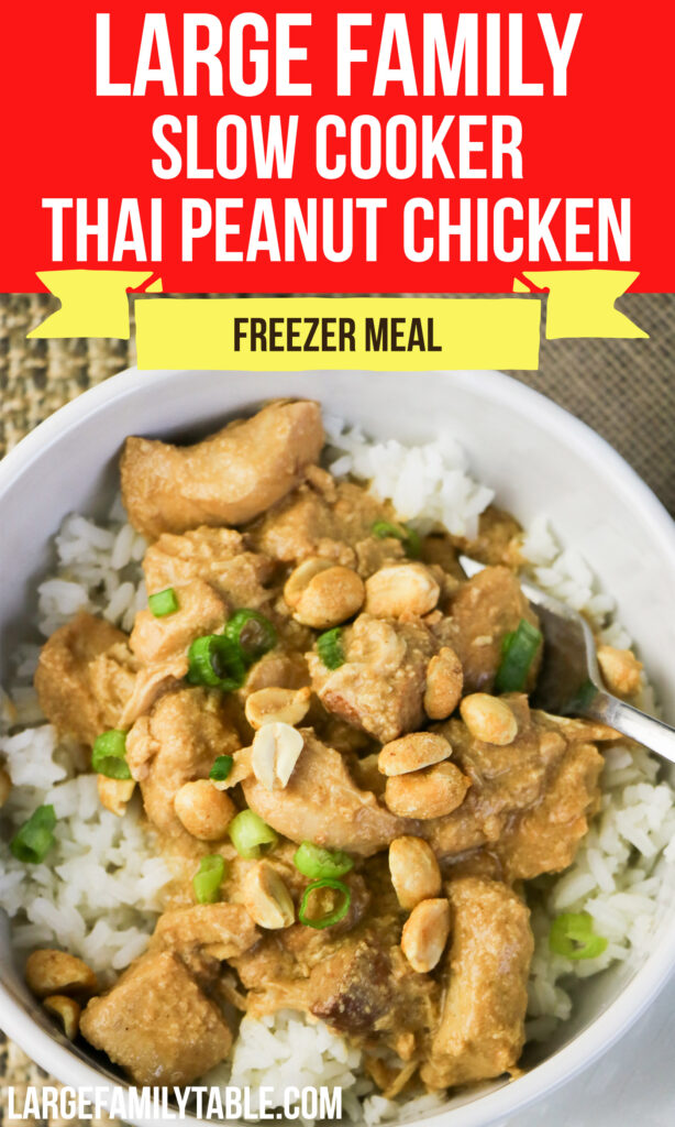 Large Family Slow Cooker Thai Peanut Chicken | Easy Crock Pot Recipes