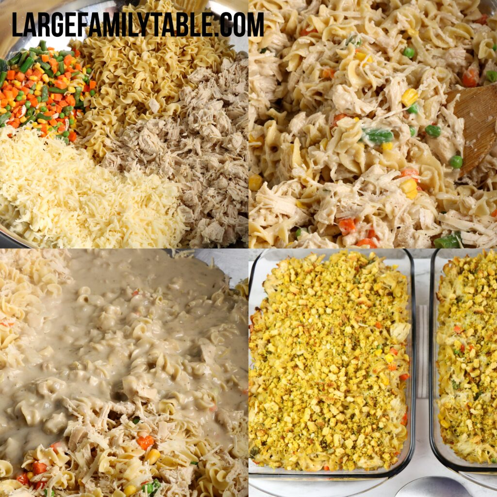 Large Family Chicken and Swiss Casserole   Easy Oven Dinner Recipe (TWO 9x13 Pans!)