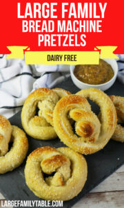 Large Family Bread Machine Pretzels