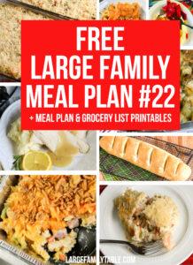 Large Family Meal Plan Week 22
