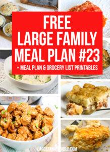 Large Family Meal Plan Week 23