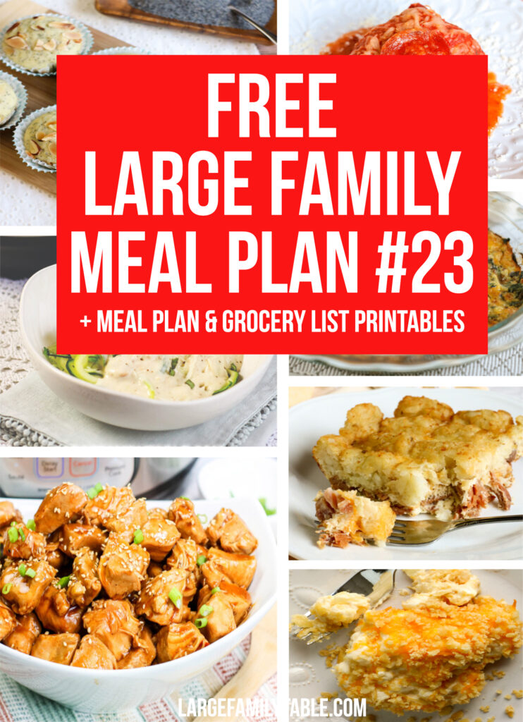 Week 23 Meal Plan for Large Family's Budgets + FREE Grocery List & Clickable Planning Pack