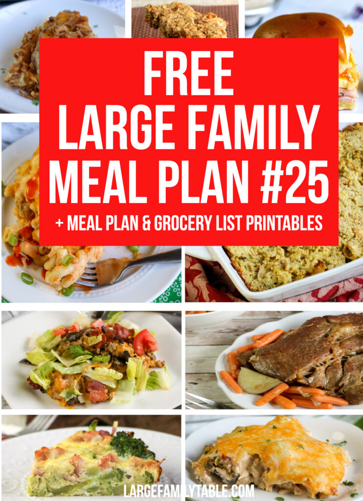 EASY Large Family Budget Meal Plan Week #25 + FREE Printable Grocery List & Planning Pages