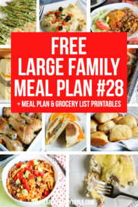 Large Family Meal Plan Week 28