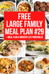 Large Family Meal Plan 29