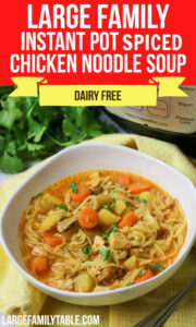 Instant Pot Spiced Chicken Noodle Soup