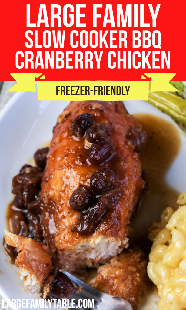 Large Family Slow Cooker BBQ Cranberry Chicken | Freezer Meal, Dairy-Free