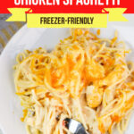 Large Family Slow Cooker Chicken Spaghetti
