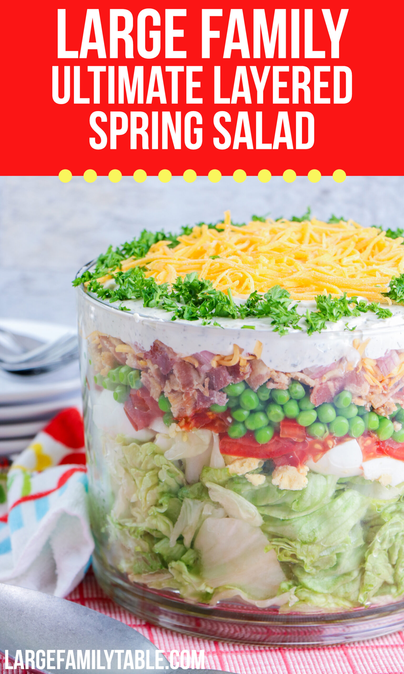 17+ Large Family Ultimate Layered Spring Salad Stock
