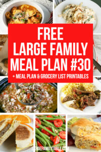 Large Family Meal Plan #30