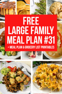 Large Family Meal Plan 31