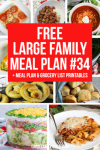 Large Family meal Plan 34