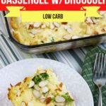 Big Family Chicken and Swiss Casserole