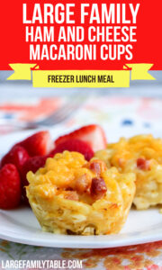 Large Family Ham and Cheese Macaroni Cup