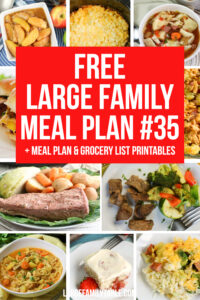 Large Family Meal Plan 35