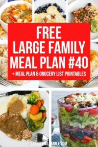 Large Family Meal Plan 40